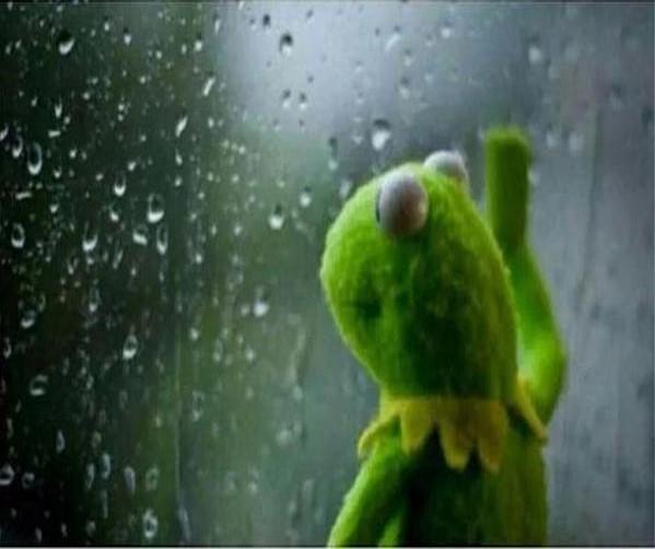 Image Sad Kermit la grenouille template meme