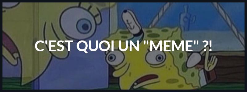 You are currently viewing Qu'est ce que c'est un «meme» ?!